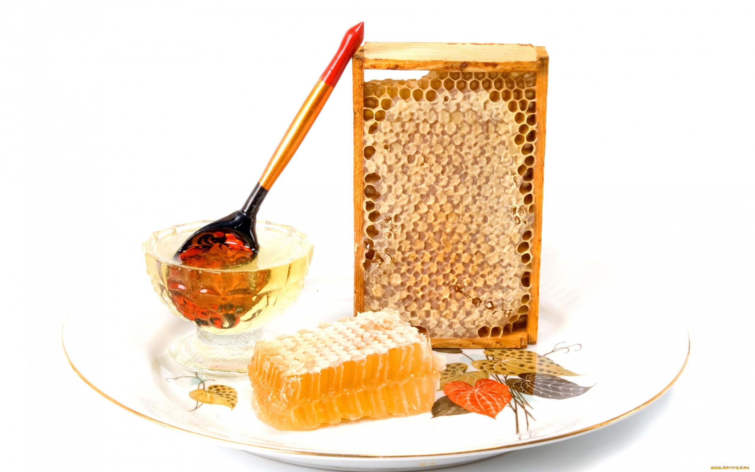 Соты в приграничных с медом на блюде - Стоковая фотография, высокое разрешение, большой размер, 300 DPI от...